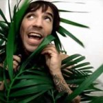kiedis-can&#039;t-stop-plant