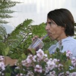 kiedis-coffee-flowers