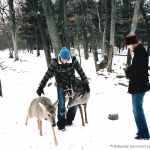 Photo taken by Blackie Dammett of Anthony Kiedis with deer in the snow