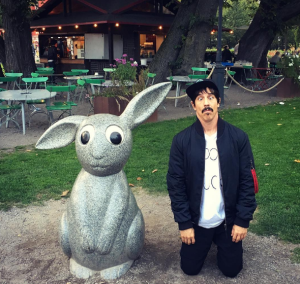 rabbit-anthony-kiedis-stockholm-2016